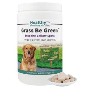 dog pee burns grass