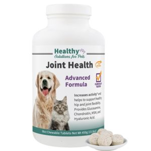 dogs glucosamine chondroitin msm