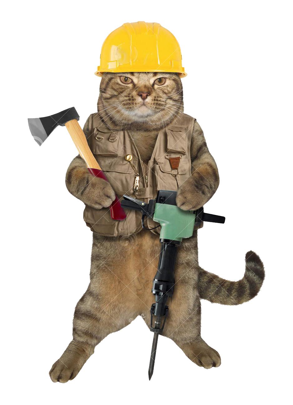 cat-construction